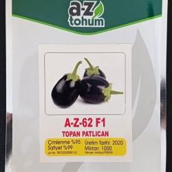 A-Z-62-F1 Topan Patlıcan Tohumu