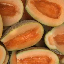A-Z-94 F1 Ananas Orange Kavun Tohumu